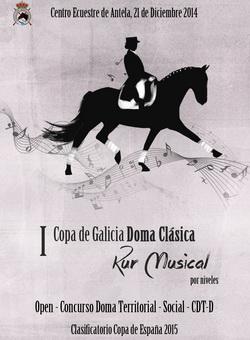 Copa-gallega-doma