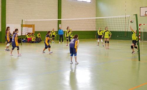 Voleibol local: Actividad del fin de semana