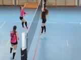 Actividad de los filiales del Club Burgas Voleibol – Copa Diputación
