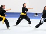 Campeonato Gallego de Kungfu Moderno 2015