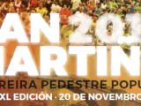 XL Carreira Popular San Martiño – 20.11.2016