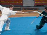 Artai domina el Campeonato Gallego de Kungfu moderno individual 2017