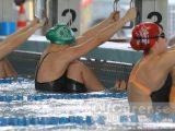 Natación Pabellón a por el título de Clubs de División de Honor en Pontevedra