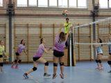 Copa Diputación y finales de Deporte Escolar en Voleibol