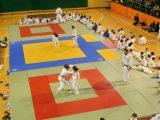 120 judokas en la Segunda jornada de la Copa Diputación 2017