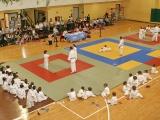 Jornada final de la Copa Diputación de Judo 2017