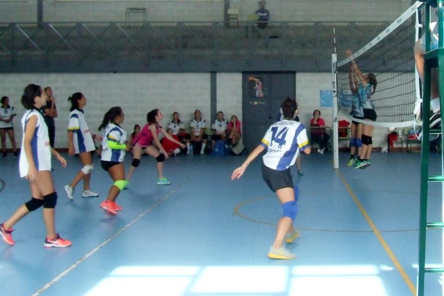 San Martiño Dompa Gestion voleibol