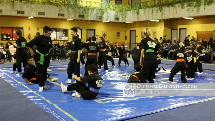 Kung Fu Artai Copa Diputacion Foto David Martinez