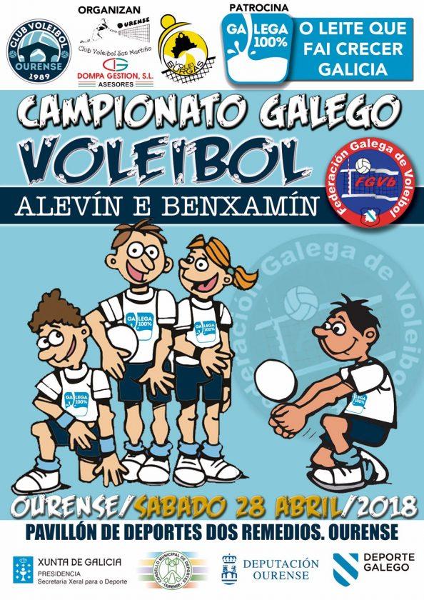 Cpto. Gallego de Voleibol Alevín y Benjamin 2018 @ Pabellón Os Remedios | Orense | Galicia | España