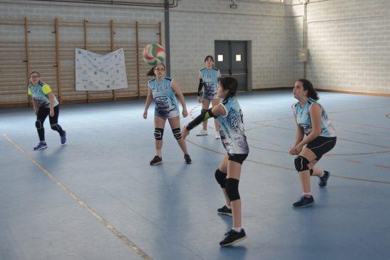 Copa Deputación de Voleibol infantil y cadete