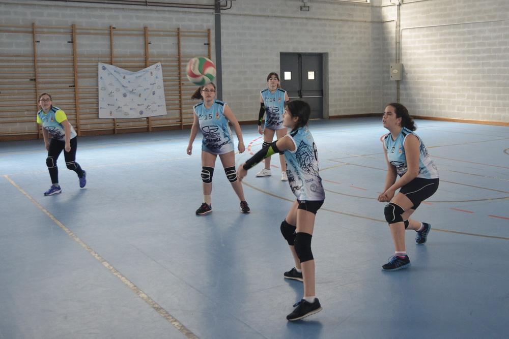 Voleibol San Martiño