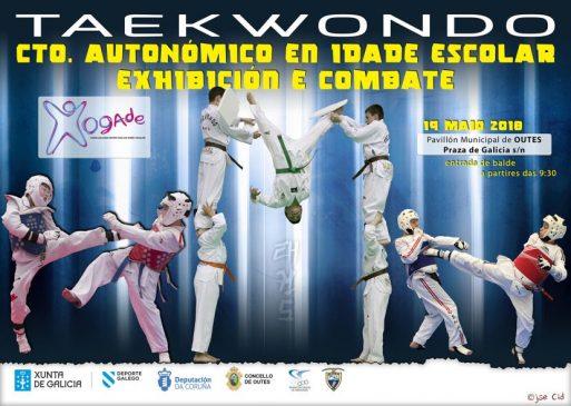 Campeonato Gallego escolar de Taekwondo de Exhibición y Combate