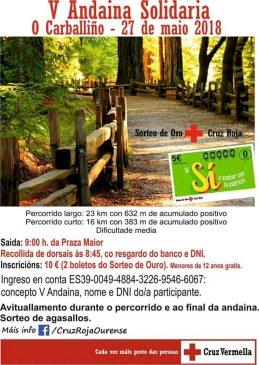 V Andaina Solidaria O Carballiño 2018 @ Praza Maior | Galicia | España