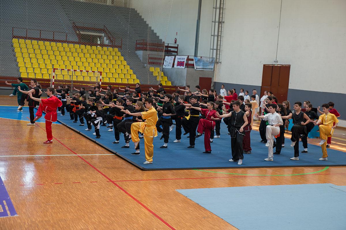 exhibición kungfu infantil