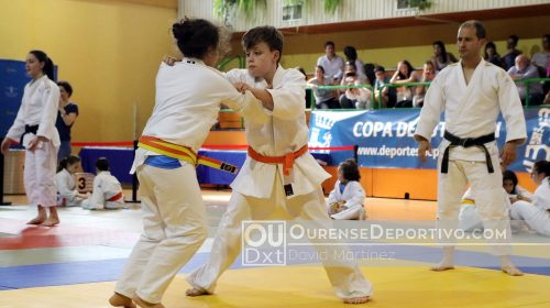 Copa Deputacion judo foto david martinez 2018