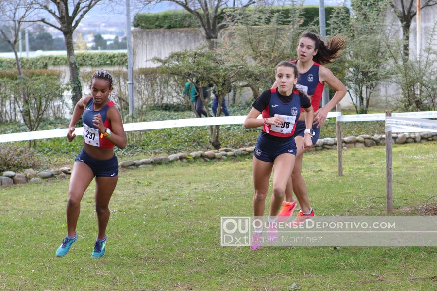 Provincial Cross Escolar Foto David Martinez (1)