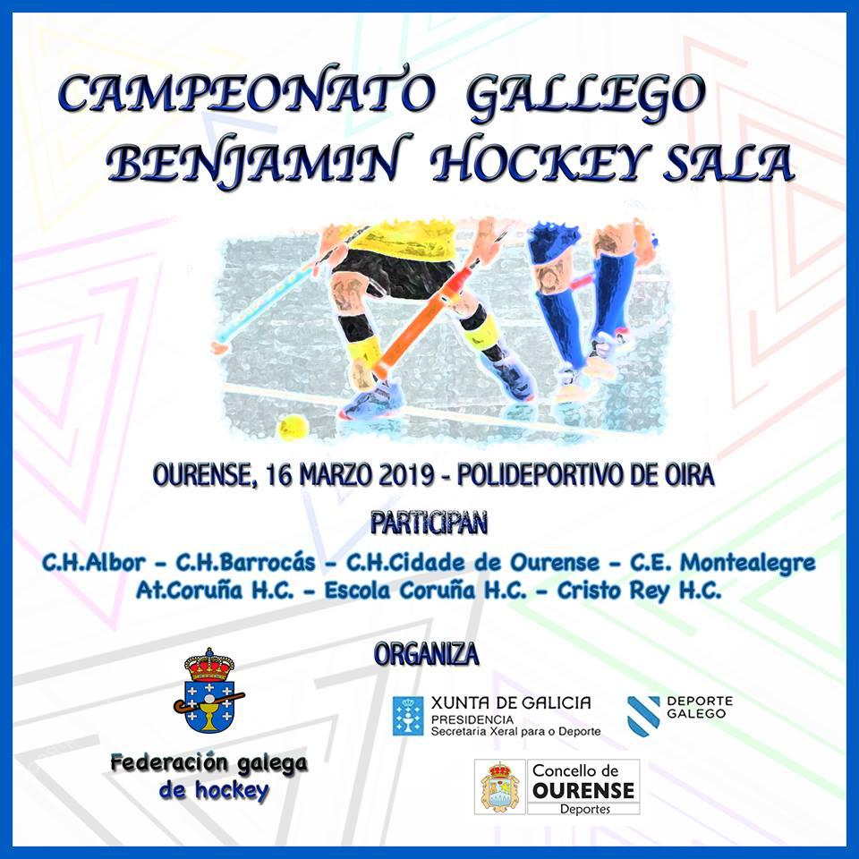 Campionato Galego BENXAMÍN HOCKEY SALA 2018/19