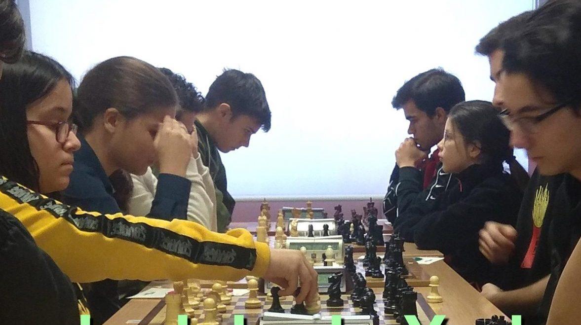 xadrez provincial