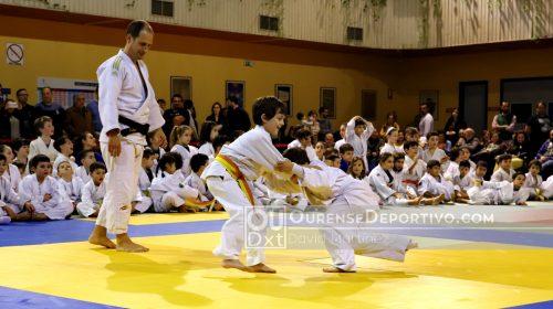 Copa Diputacion Judo Foto Martinex