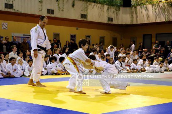 Arrancó con éxito la Copa Diputación de Judo 2020