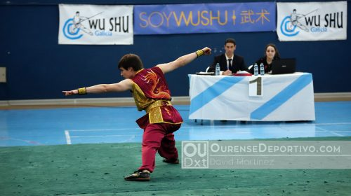 WuShu Foto David Martinez