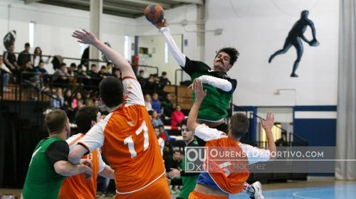 Balonman Pabellon Foto Martinez